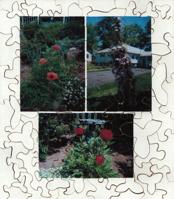 Spring Flowers 2002 Puzzle 1