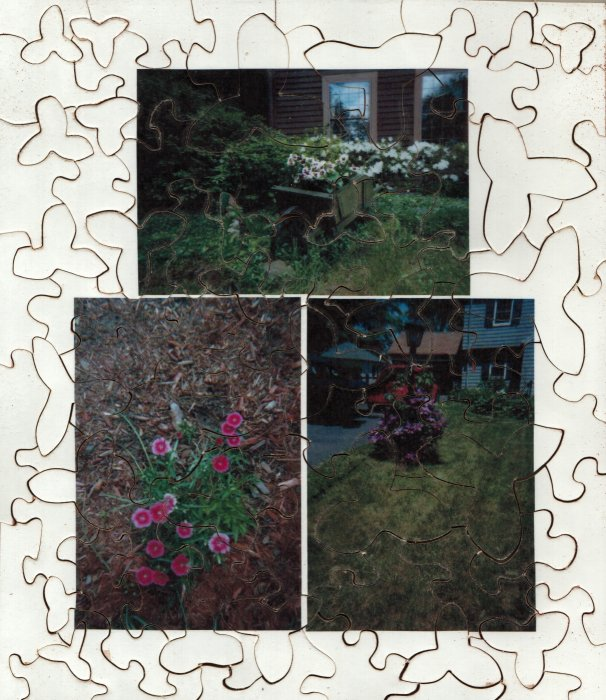 Spring Flowers 2002 Puzzle 2